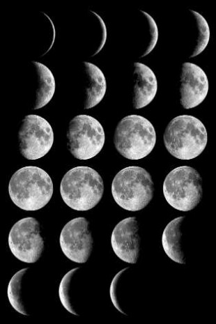 Moon_phases_small-310x465