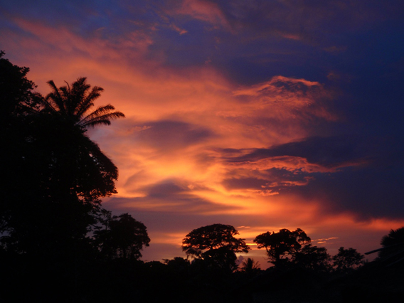 Sunset over the Congo rainforestPhoto: David Beaune via Mongabay.com