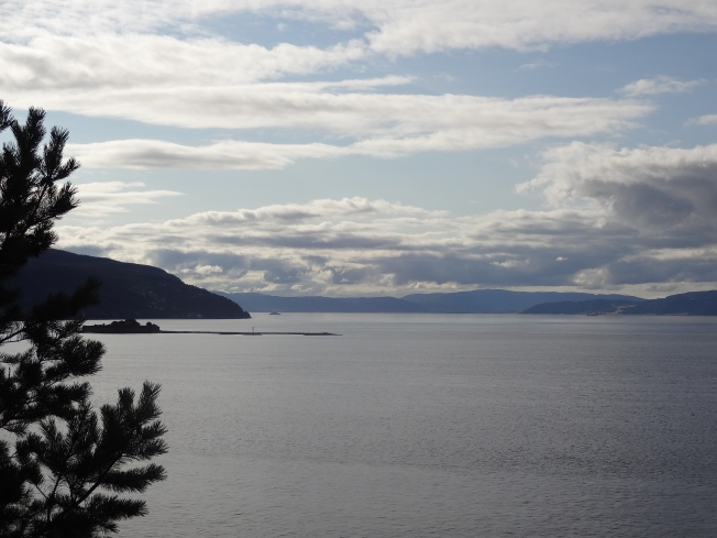 Trondheimsfjord, seen from the Lade Walk. Photo: PK Read