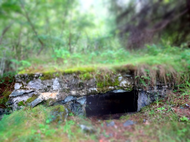 Bunker. Trondheim, Norway Photo: PK Read