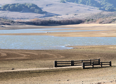 Nicasio Reservoir, California. December 2013. Photo: Alan Dep/Marin Independent Journal