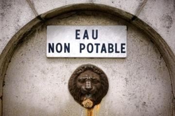 Photo:  Olivier Le Queinec