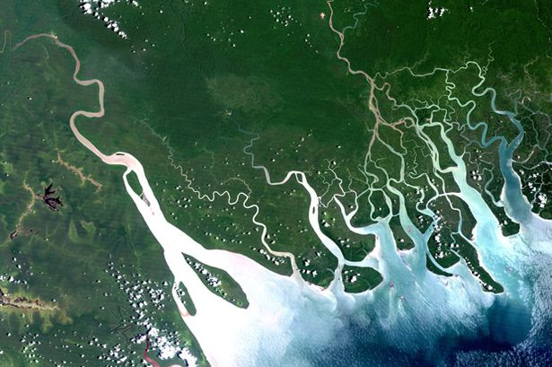 The Gulf of Papua, the delta of the Fly River. Image: NASA