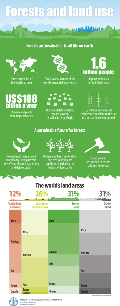 Forestry_infografic_800