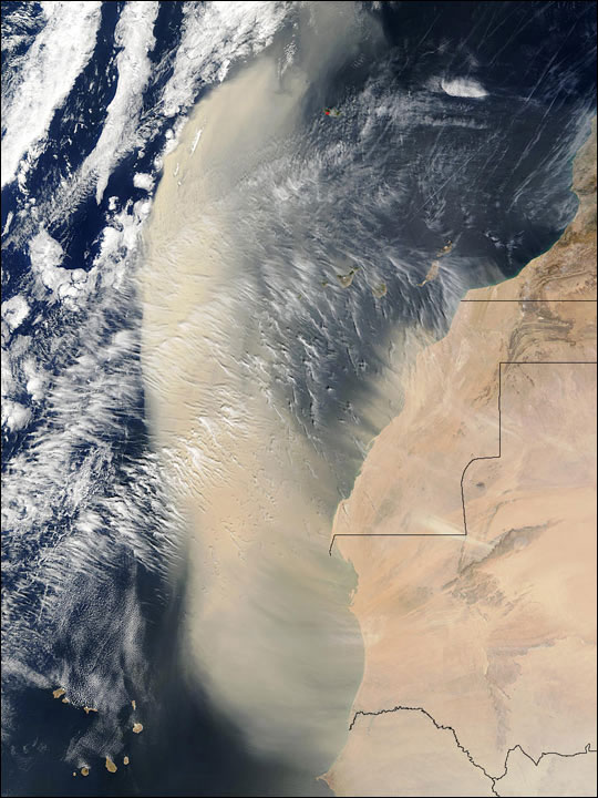 A vast dust plume blows off Northern Africa. Photo: NASA/USGS