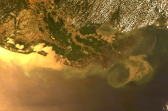 A MODIS image from NASA's OceanColor Web shows floodwaters and sediment emptying into the Gulf. Source: PennNews/NASA