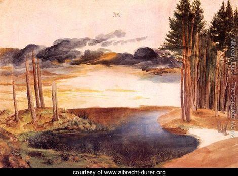 Pond in the Woods (1496) Artist: Albrecht Dürer
