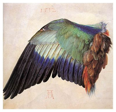 The Wing (1512) Artist: Albrecht Dürer