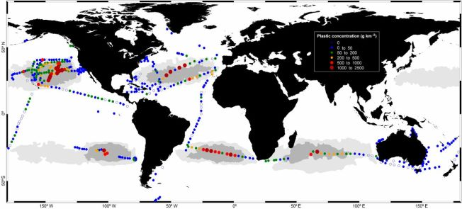 Concentrations of plastic debris in surface waters of the global ocean. Colored circles indicate mass concentrations (legend on top right). The map shows average concentrations in 442 sites (1,127 surface net tows). Gray areas indicate the accumulation zones predicted by a global surface circulation model (6). Image/caption: Andrés Cózar et al./PNAS
