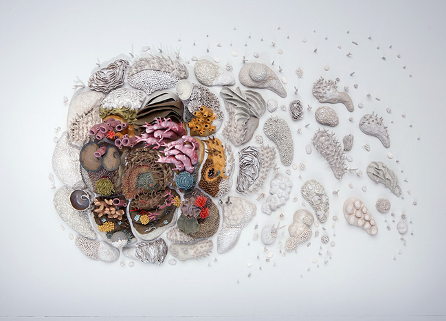 Our Changing Seas III, ceramic installation illustrating the changes in world coral reef systems. Art/photo: Courtney Mattison/Arthur Evans