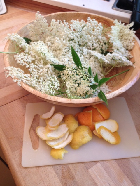 The elderflower heads.  All cordial photos: PK Read