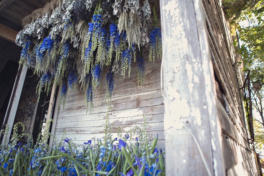 FlowerHouse promotes sustainability and responsibility to American-grown flower farms.