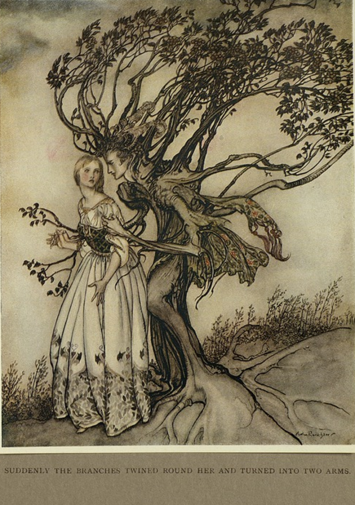 Illustration for The Old Woman In The Wood, from Little brother & little sister and other tales by the Brothers Grimm (1917), by one of my favorite illustrators. Artist: Arthur Rackham