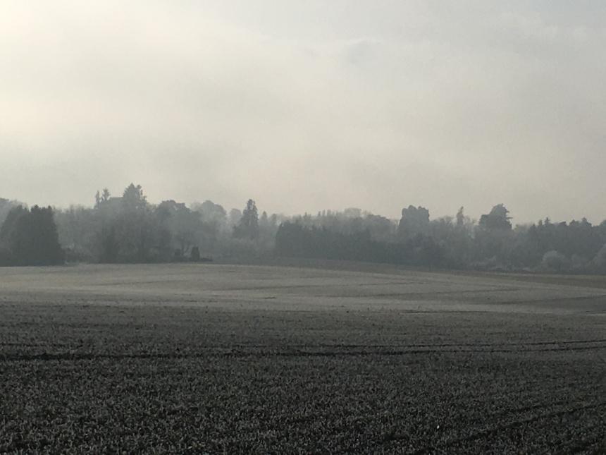 View across the fields. Photo: PKR